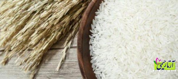 اطلاعات مهم در تشخیص برنج خوب