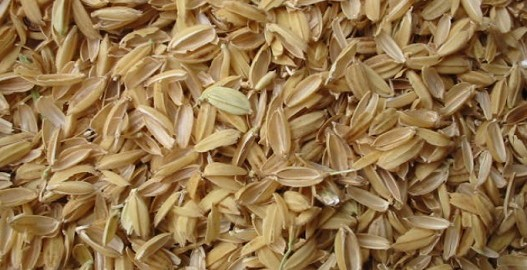 فواید سبوس برنج