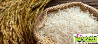پخت برنج فجر ، خرید برنج فجر