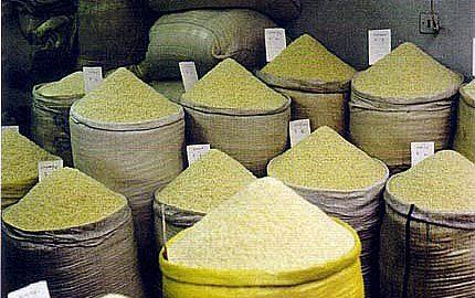 كاشت ،داشت،برداشت برنج