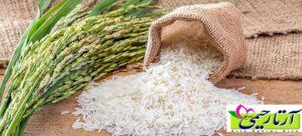 برنج ایرانی غنی از ویتامین