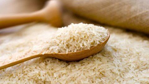 برنج شپشک نزند