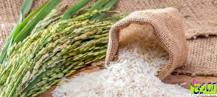 برنج استخوانی