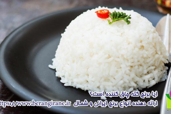 ایا برنج کته چاق کننده است