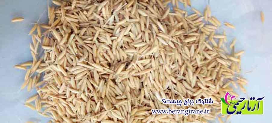 شلتوک برنج چیست؟