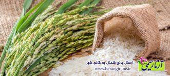 ارسال برنج شمال به قائم شهر