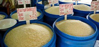 بهره وری برنج در جهان