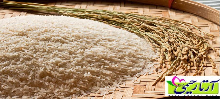 سوالات رایج درباره برنج ایرانی نو و کهنه