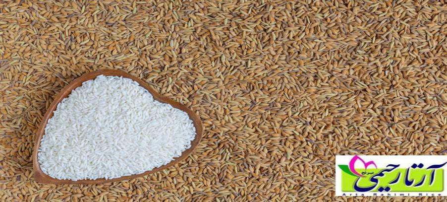 برنج ایرانی کالری بیشتری دارد یا برنج خارجی ؟