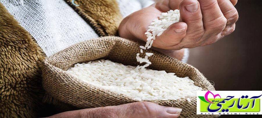 مقایسه برنج هاشمی و علی کاظمی