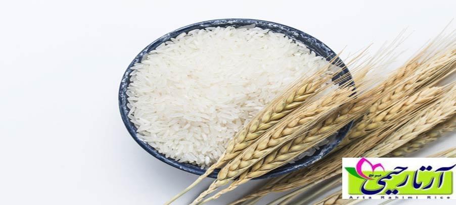 9 کاربرد دانه های برنج در خانه داری . خرید برنج ایرانی