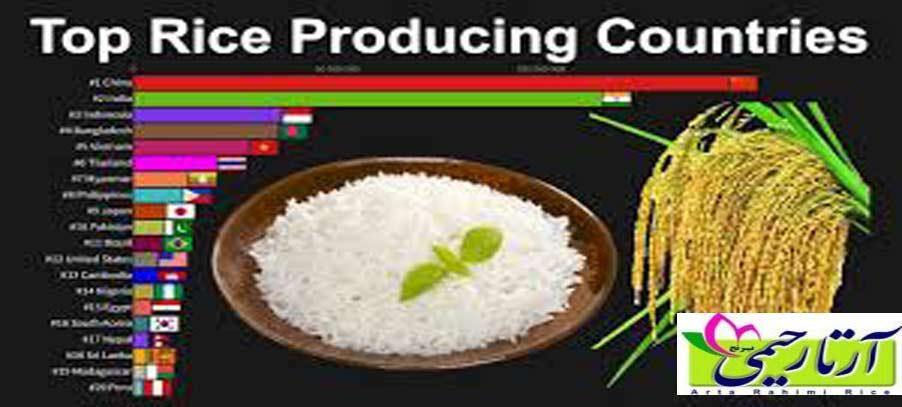 بزرگترین کشور های تولید کننده برنج