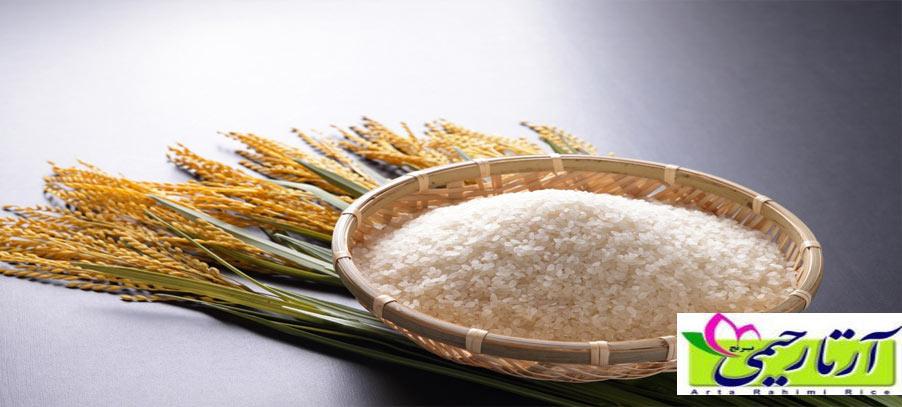 بهترین برنج سفید دنیا