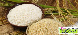 برنج امراللهی چیست